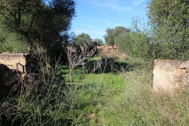 Ubebygd land til salgs i Sa Rapita / La Rapita - € 220 000 (Ref: 4319053)
