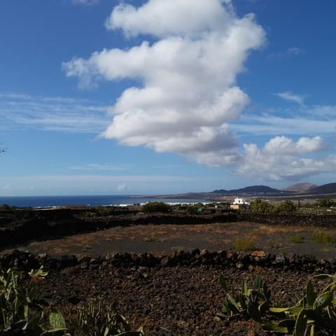 Terre non Aménagée à vendre à Arrieta - 32 000 € (Ref: 5245849)