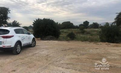 Terrain à Bâtir à vendre à Catral - 120 000 € (Ref: 5005220)