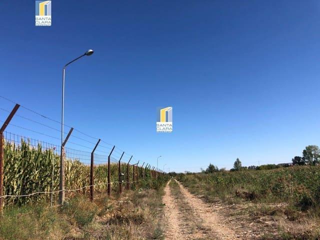 Byggetomt til salgs i Villaralbo - € 60 000 (Ref: 5557304)