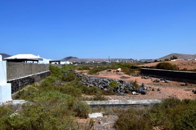 Terreno/Finca Rústica en La Oliva en venta - 65.084 € (Ref: 3520404)