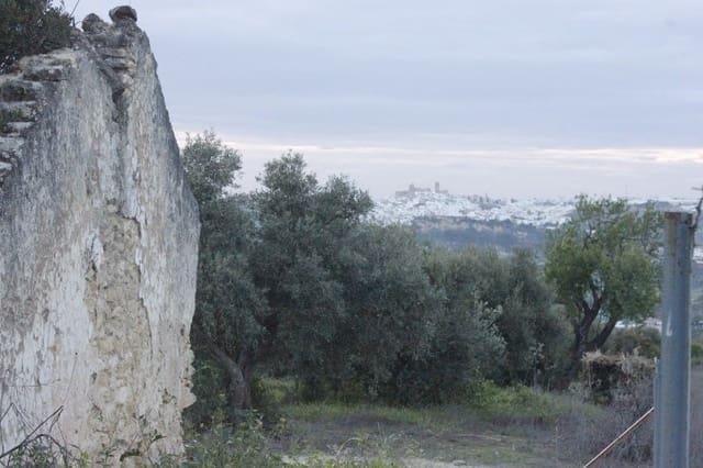 Ruin till salu i Arcos de la Frontera - 70 000 € (Ref: 2238540)