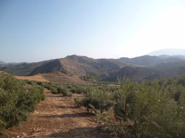 Undeveloped Land for sale in Olvera - € 95,000 (Ref: 2695285)