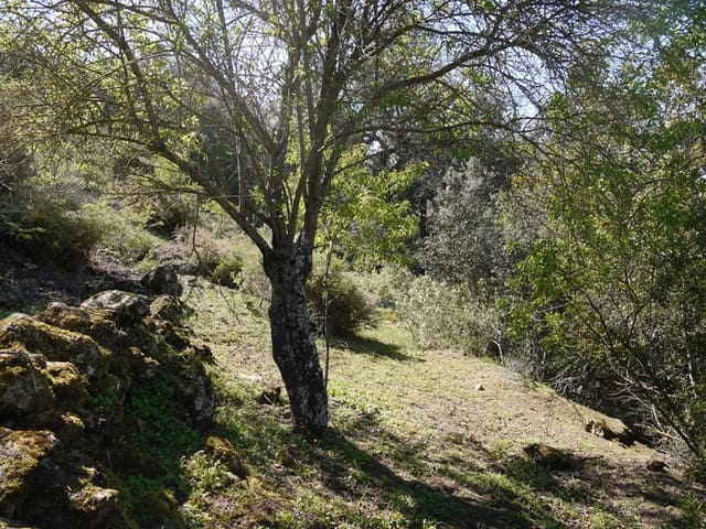 Ruin for sale in Fuente del Conde - € 29,000 (Ref: 3010720)