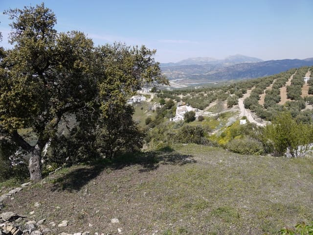 Undeveloped Land for sale in Fuente del Conde - € 29,000 (Ref: 3010720)