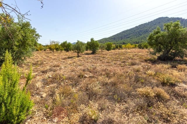 Ubebygd land til salgs i Biar - € 20 120 (Ref: 5730886)