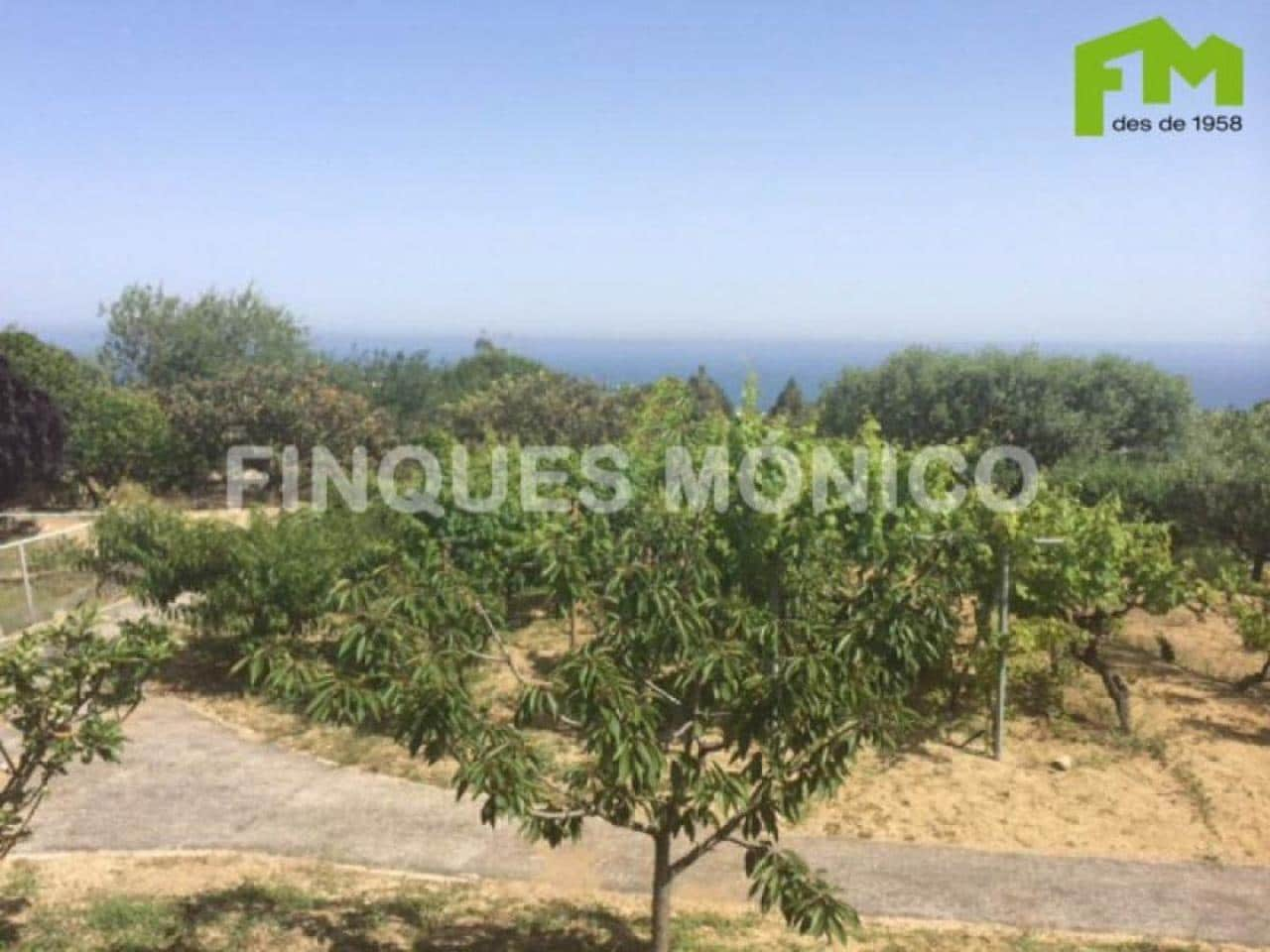 Building Plot for sale in Teia - € 500,000 (Ref: 4277189)