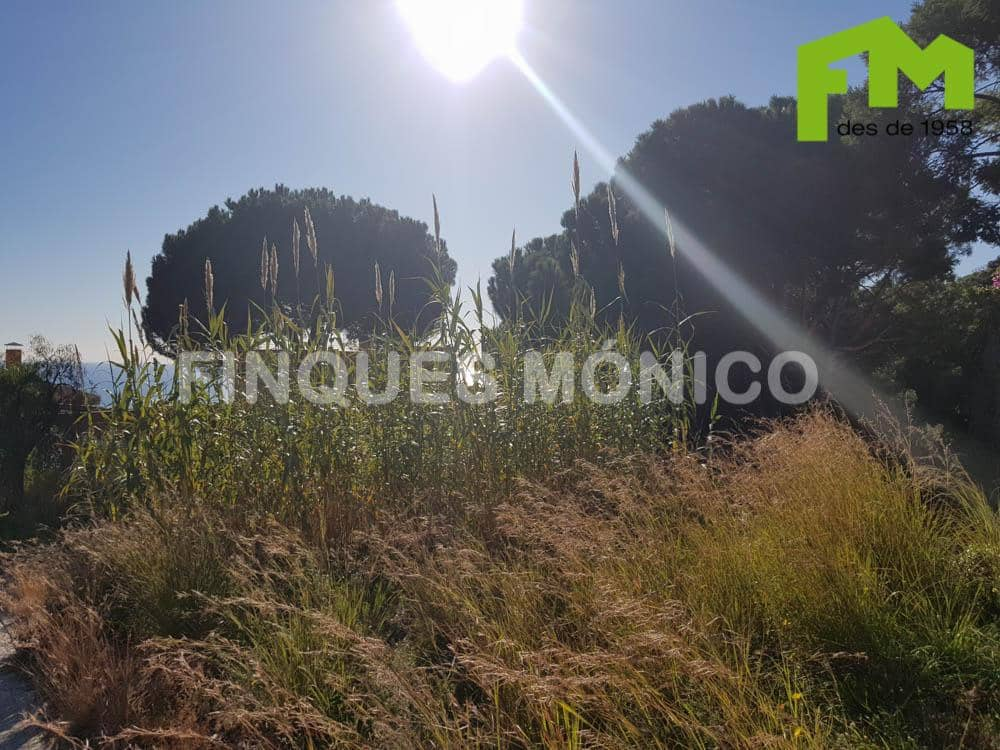 Building Plot for sale in Teia - € 300,000 (Ref: 4377320)