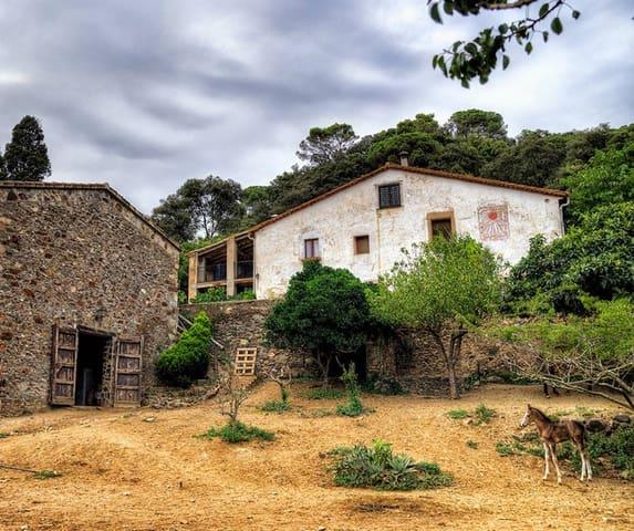 6 Zimmer Finca/Landgut zu verkaufen in Tordera - 582.000 € (Ref: 5769206)