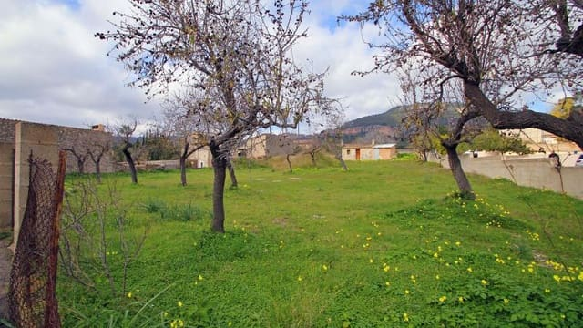 Terreno/Finca Rústica en Es Capdella en venta - 740.000 € (Ref: 5277647)
