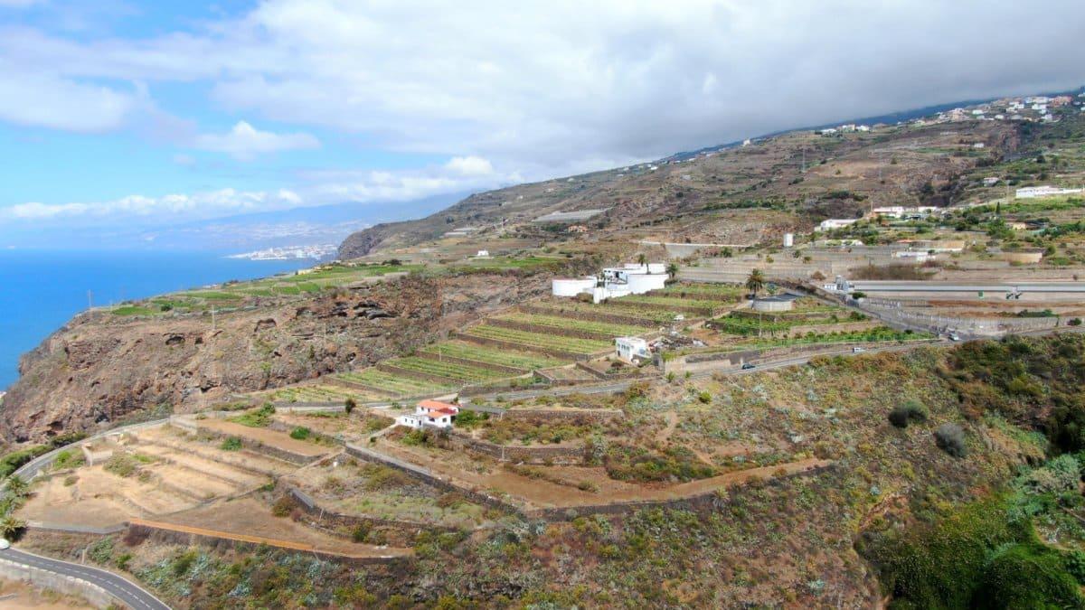 Teren niezagospodarowany na sprzedaż w La Guancha - 81 000 € (Ref: 4734540)
