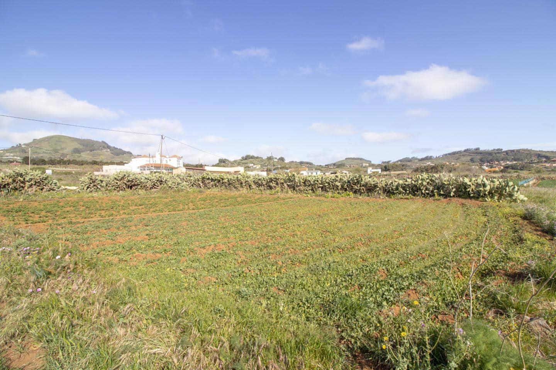 Ubebygd land til salgs i La Esperanza - € 79 800 (Ref: 5134718)