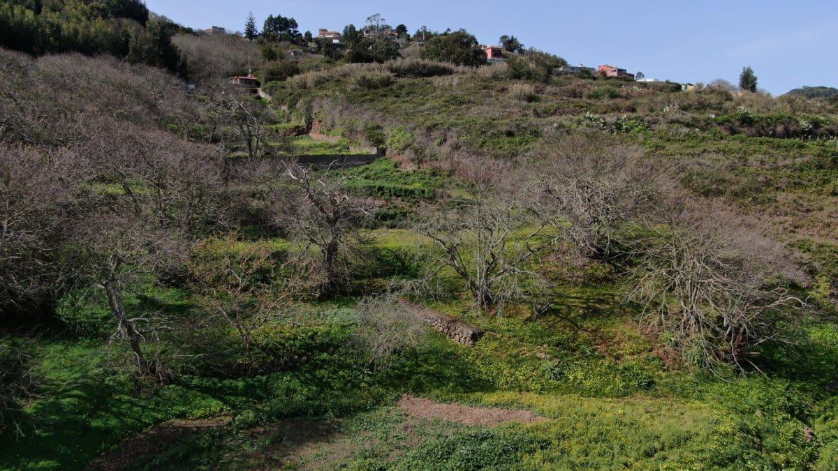 Ubebygd land til salgs i La Esperanza - € 59 000 (Ref: 5180455)