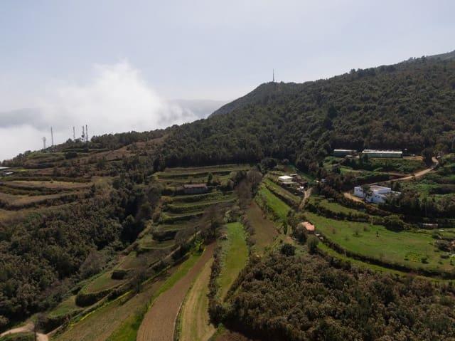 Terre non Aménagée à vendre à Los Realejos - 324 900 € (Ref: 5995079)