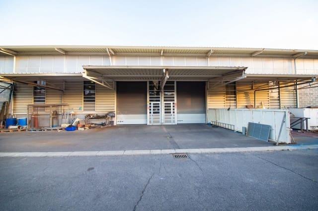 Empresa para venda em El Medano - 1 990 000 € (Ref: 6176105)