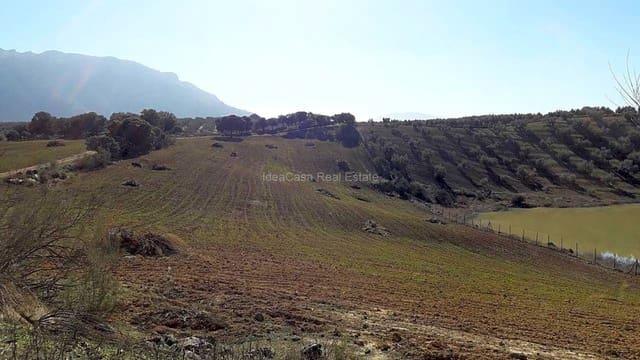 Rakentamaton maa vuokrattavana paikassa Archidona - 1 200 € (Ref: 3656740)