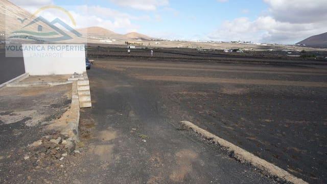 Ubebygd land til salgs i Guime - € 115 000 (Ref: 4954952)