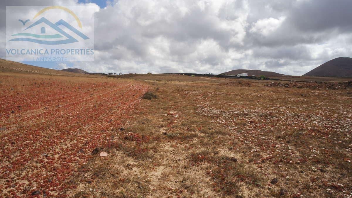 Grunde uden byggetilladelser til salg i Tinajo - € 215.000 (Ref: 6069873)