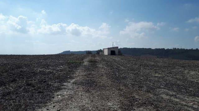 Działka budowlana na sprzedaż w Jerez de la Frontera - 213 900 € (Ref: 4424891)
