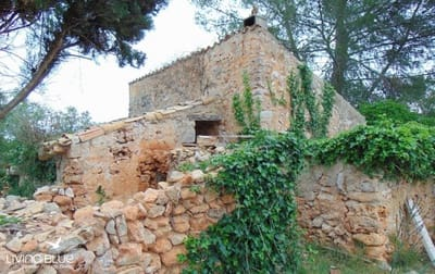 Undeveloped Land for sale in Costitx - € 235,000 (Ref: 4756344)