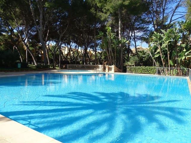 2 soverom Leilighet til leie i Santa Ponsa med svømmebasseng - € 1 800 (Ref: 5988865)