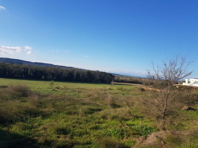 Undeveloped Land for sale in Ultramort - € 135,000 (Ref: 4560320)