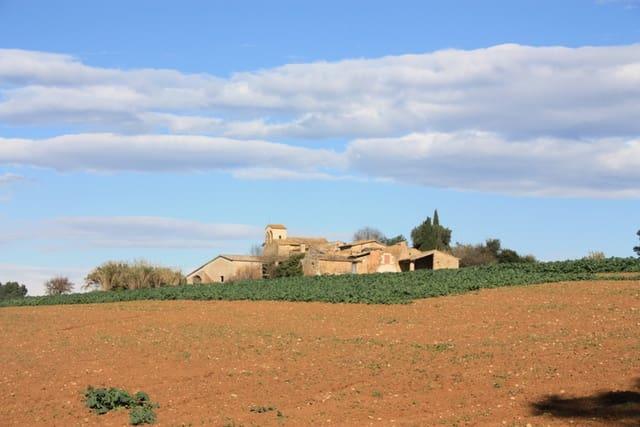 10 camera da letto Finca/Casa di Campagna in vendita in Vilademuls con garage - 2.200.000 € (Rif: 4608671)