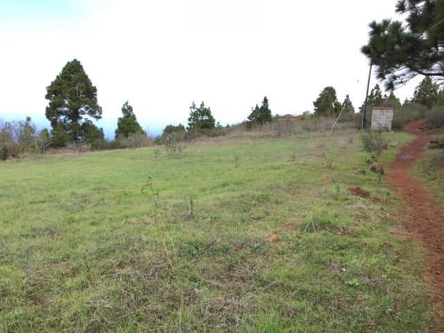Ubebygd land til salgs i Puntagorda - € 63 000 (Ref: 4334492)