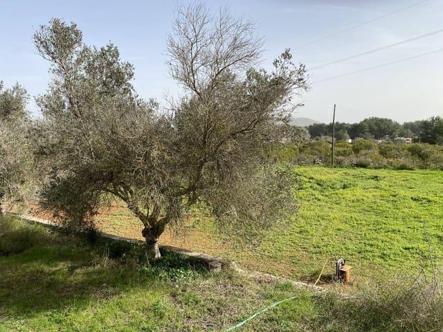 Terrain à Bâtir à vendre à Santa Gertrudis de Fruitera - 750 000 € (Ref: 5930865)
