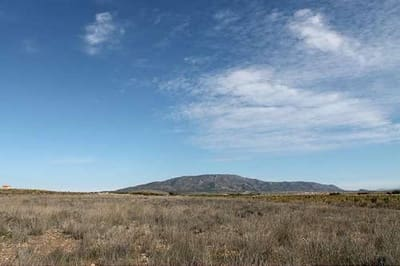 Undeveloped Land for sale in Pinoso - € 27,990 (Ref: 3275274)