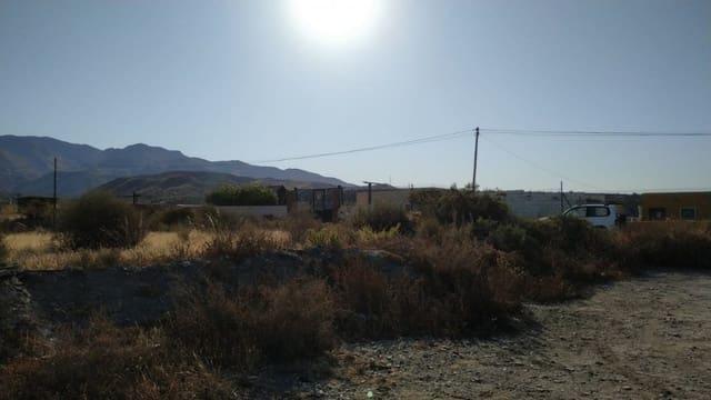 Terreno para Construção para venda em Pechina - 49 000 € (Ref: 5436950)