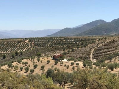 Undeveloped Land for sale in Granada city - € 150,000 (Ref: 4733386)