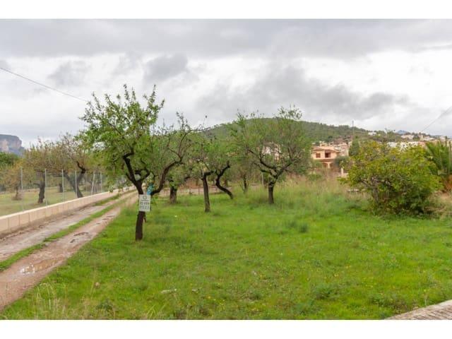 Grunde uden byggetilladelser til salg i Lloseta - € 23.000 (Ref: 5643175)
