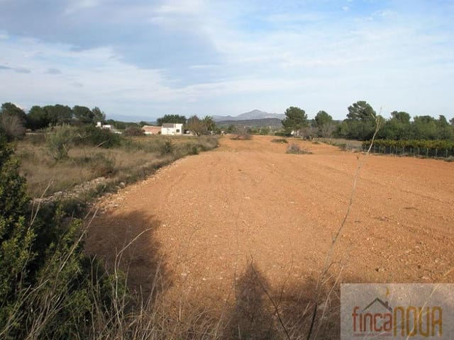 Ubebygd land til salgs i Benicarlo - € 45 000 (Ref: 2756080)