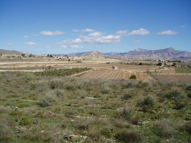 Terrain à Bâtir à vendre à La Romana - 55 000 € (Ref: 4916109)