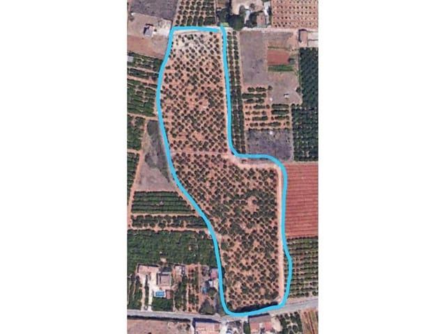 Landgrundstück zu verkaufen in Pamis - 154.000 € (Ref: 5707384)