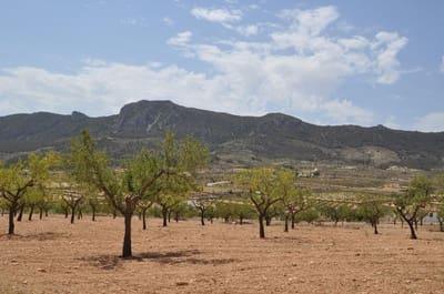 Landgrundstück zu verkaufen in Algayat - 28.000 € (Ref: 5384065)