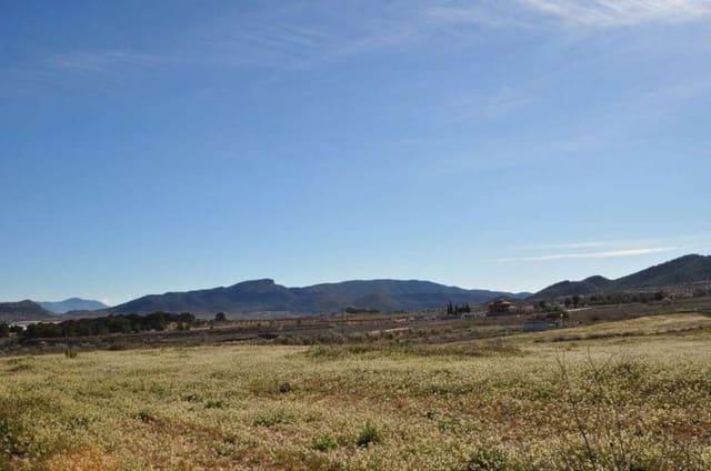 Terreno/Finca Rústica en Chinorlet / Xinorlet en venta - 46.000 € (Ref: 5384181)