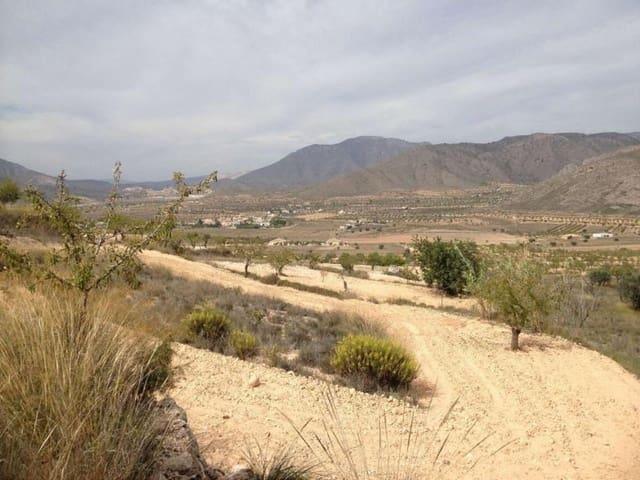 Ubebygd land til salgs i Barbarroja - € 45 995 (Ref: 5384649)
