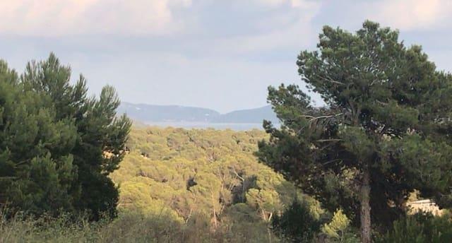 Ubebygd land til salgs i San Jose / Sant Josep de Sa Talaia - € 1 130 000 (Ref: 5925532)