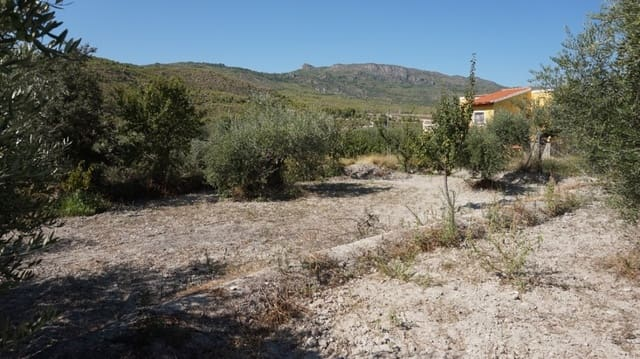 1 bedroom Finca/Country House for sale in Moratalla - € 89,950 (Ref: 4951540)