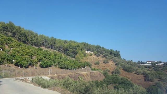 Terreno Non Edificato in vendita in Frigiliana - 140.000 € (Rif: 5750444)