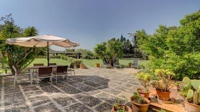 12 Zimmer Finca/Landgut zu verkaufen in Cala San Vicente / Cala Sant Vicenc mit Pool - 5.500.000 € (Ref: 3718871)
