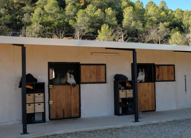 1 slaapkamer Finca/Landhuis te koop in Lledo - € 225.000 (Ref: 5742894)
