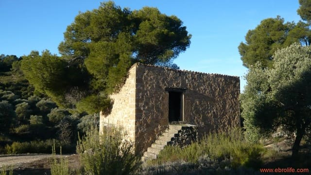 1 bedroom Finca/Country House for sale in Maella - € 27,000 (Ref: 5867188)