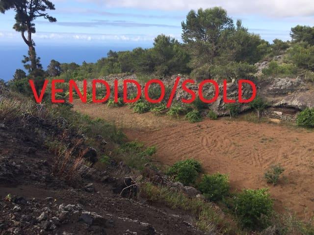 Grunde uden byggetilladelser til salg i El Tanque - € 45.000 (Ref: 4562700)