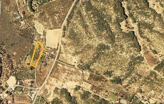 Ubebygd land til salgs i Guardamar del Segura - € 113 000 (Ref: 5523222)