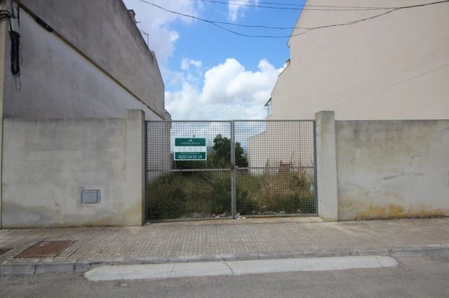 Terrain à Bâtir à vendre à Muro - 100 000 € (Ref: 4576854)