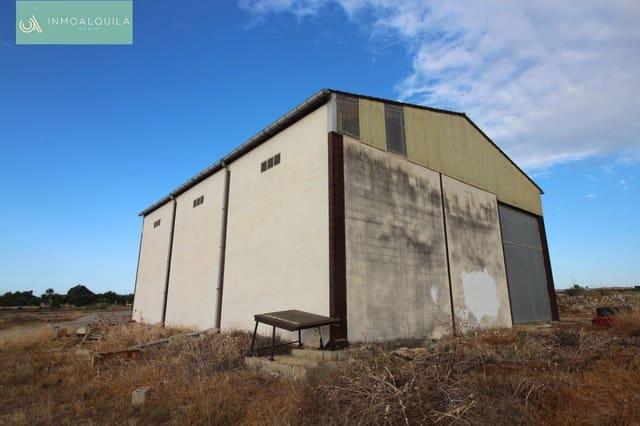 Entreprise à vendre à Santa Margalida - 240 000 € (Ref: 5475697)