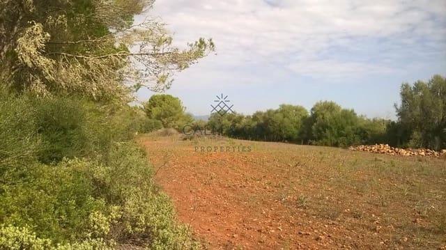 Terreno Não Urbanizado para venda em Algaida - 290 000 € (Ref: 4533409)